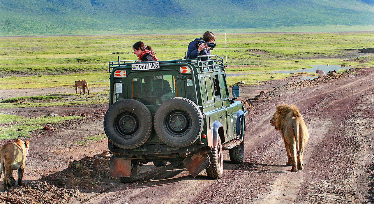 Experience 7 Days Thrill and wilderness of Tanzania Safari